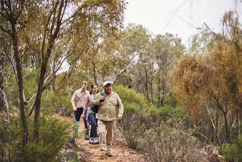 Walking through Wilpena Pound